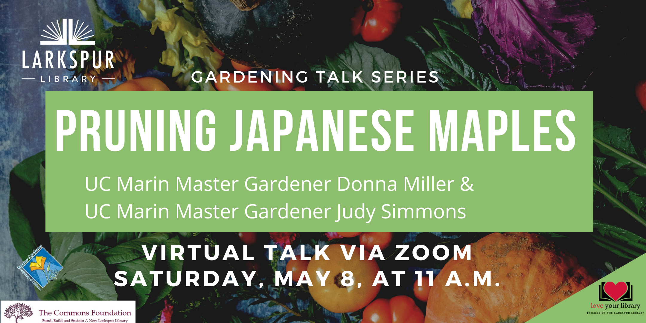 Pruning Japanese Maples with UC Marin Master Gardeners on May 8 at 11 am